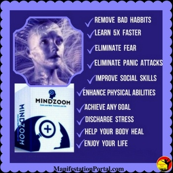 mindzoom 2 review