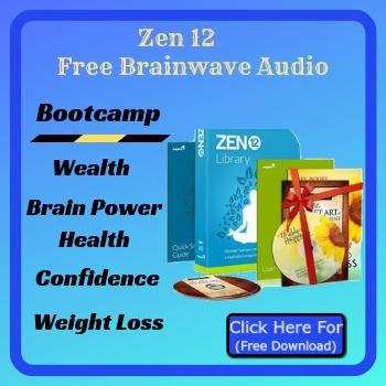 Zen 12 Program
